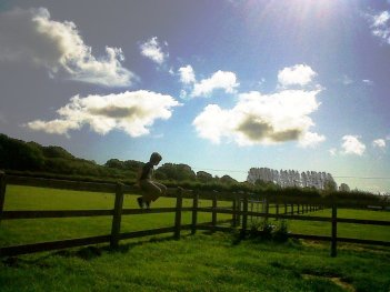 Donkey sanctuary, Wroxall