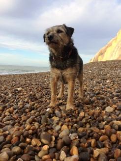 Charlie at Alum Bay
