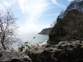 Shanklin view