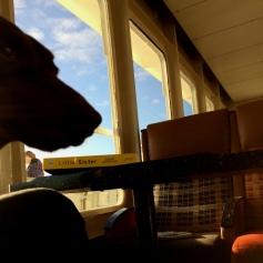 Leonard on the ferry
